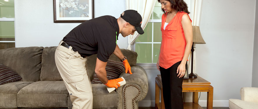 Minot, ND carpet upholstery cleaning